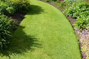 Garden Turfing Services in Washington