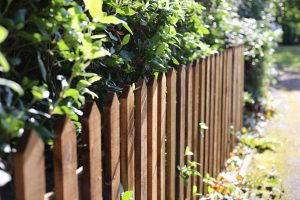 Fencing Earlsfield